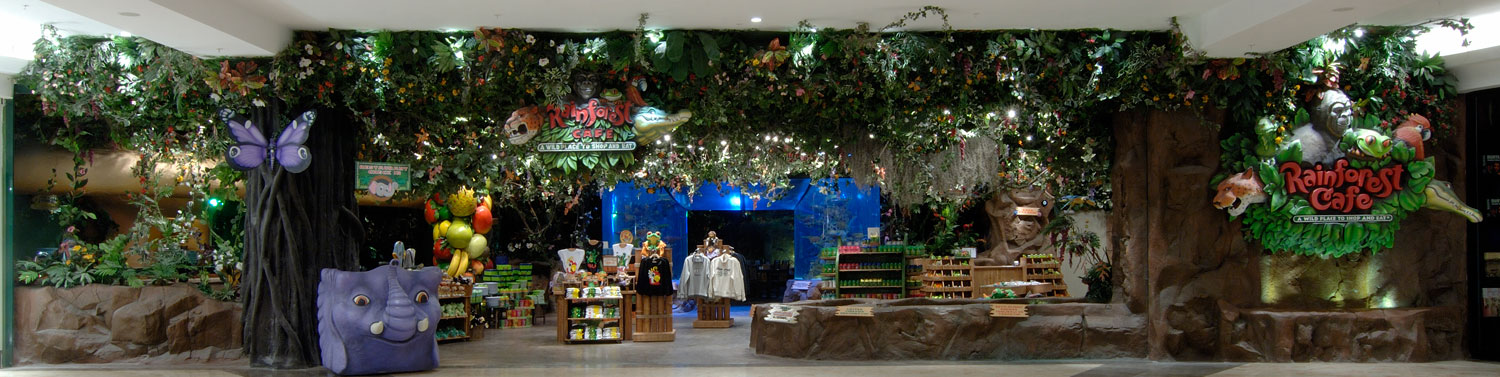 rainforest cafe inc research report Rainforest cafe, inc essay, research paper rainforest cafe, inc outline to rainforest cafe research report corporate background history.